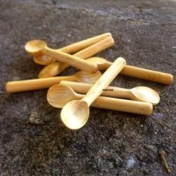 Cuillère mini en buis pour saleron