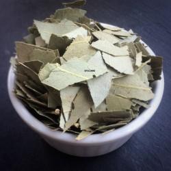 Eucalyptus feuilles
