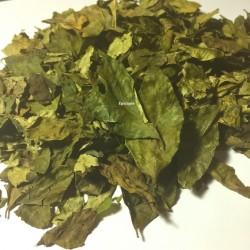 Kaloupilé (feuilles de curry)